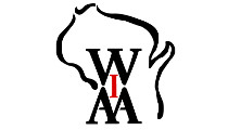 WIAA to Provide Concussion Insurance for Member School Student-Athletes
