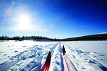 Waxing 101 for Nordic Ski Coaches
